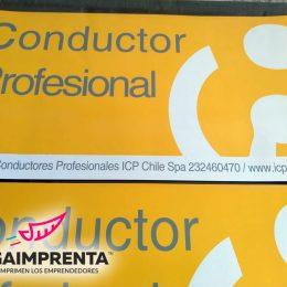 magneticos para vehiculos conductor profesional